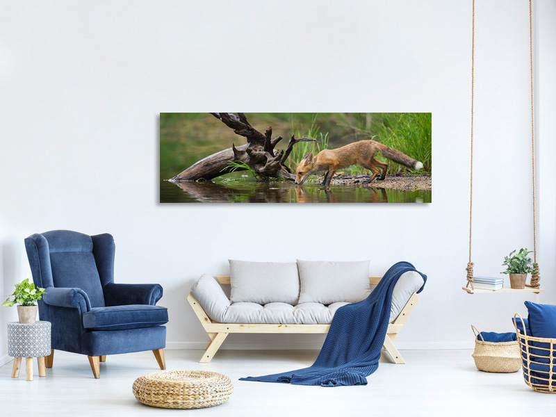 Tableau sur Toile Panoramique Red Fox II
