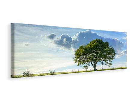 Panoramic Canvas Print Spring Tree