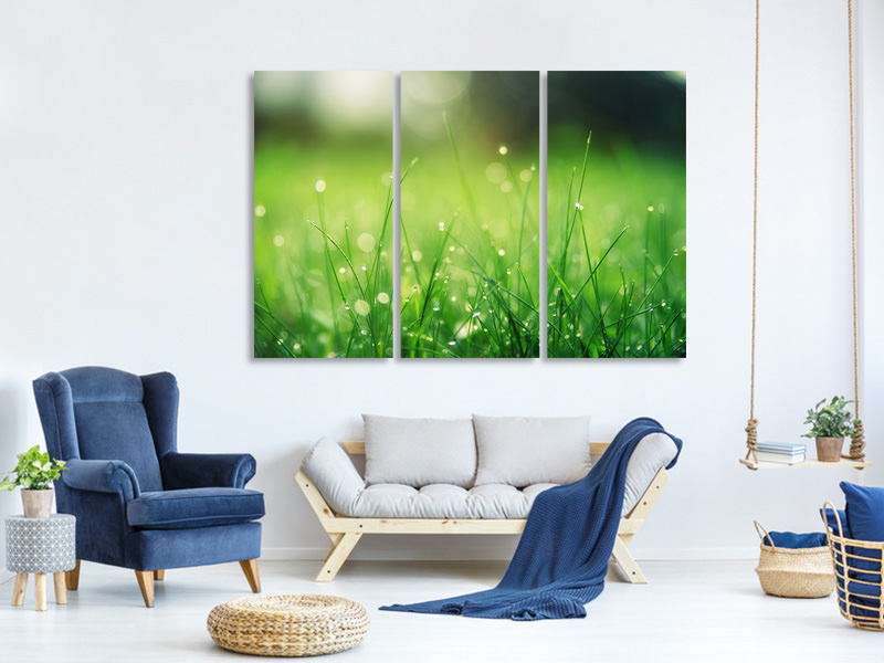 3 Piece Canvas Print Meadow with morning dew