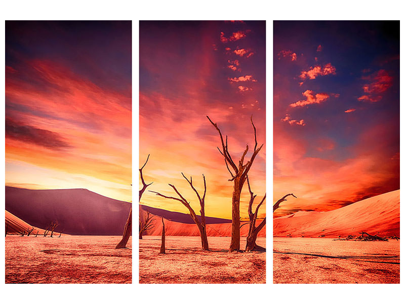 3 Piece Canvas Print Colorful desert