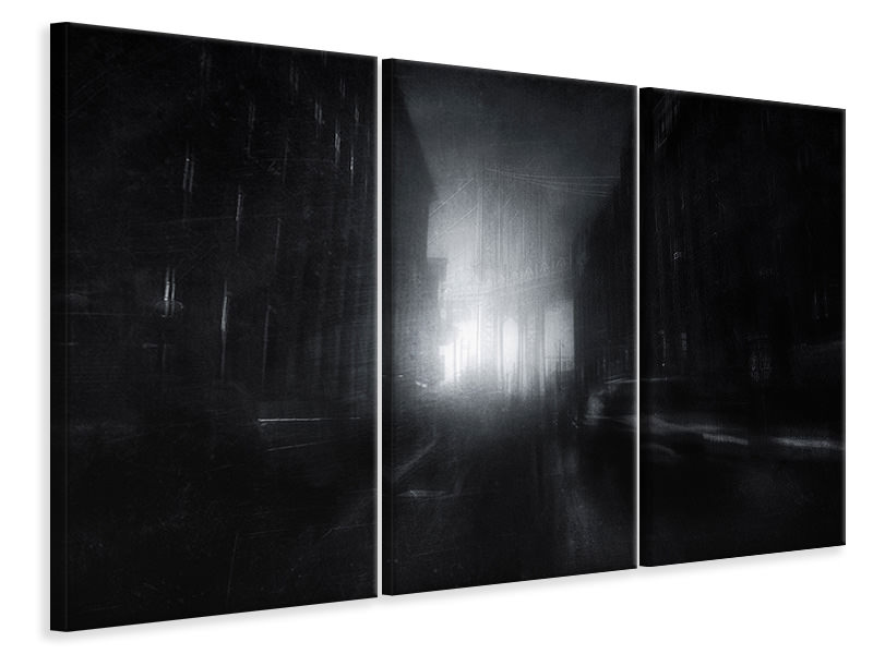 3 Piece Canvas Print Dark Vision