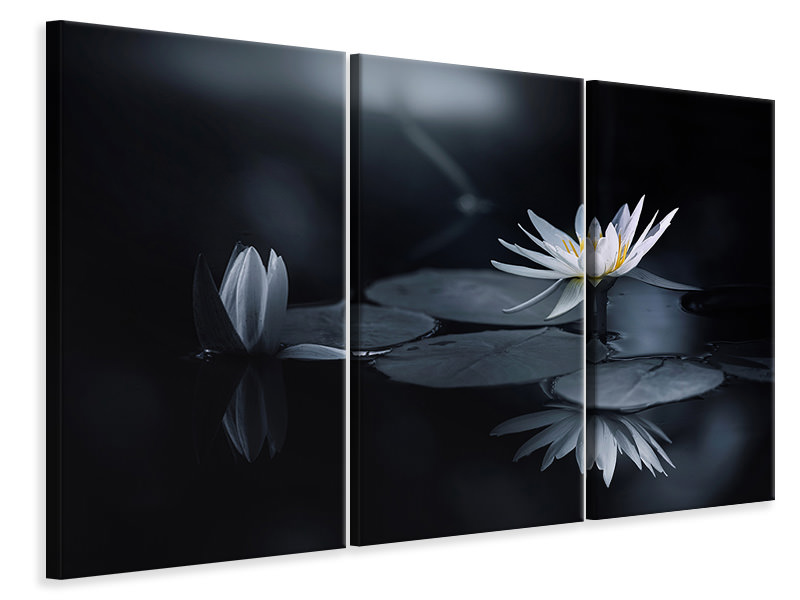 3 Piece Canvas Print Reflection IV