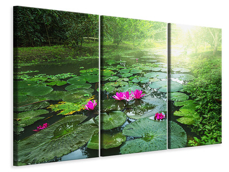 3 Piece Canvas Print Garden Pond