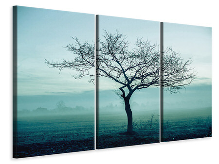 3 Piece Canvas Print The Magic Tree