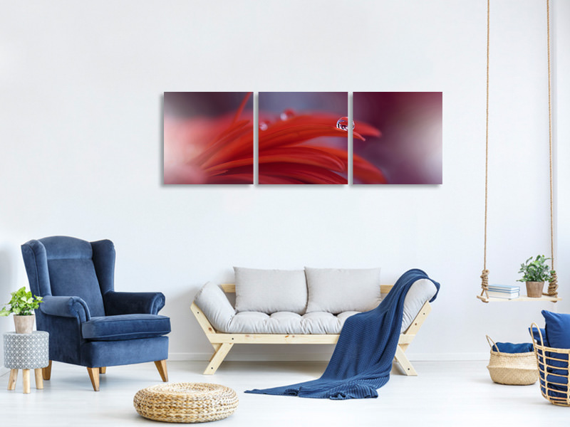Panoramic 3 Piece Canvas Print Red Passion