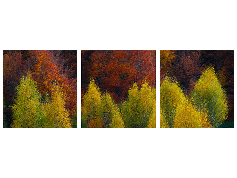 Panoramic 3 Piece Canvas Print Nimbrethil