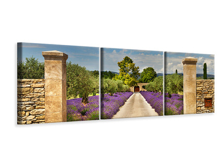 Panoramic 3 Piece Canvas Print Lavender Garden
