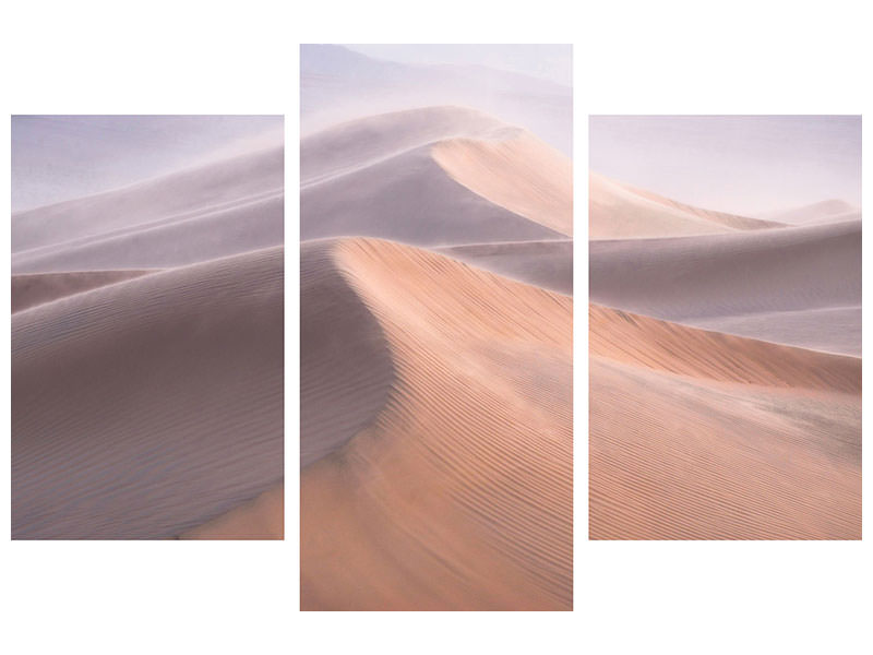 Modern 3 Piece Canvas Print Wind