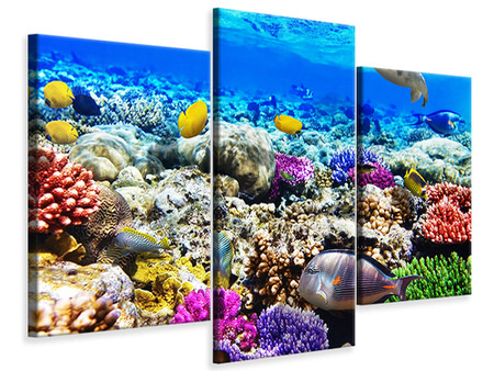 Modern 3 Piece Canvas Print Fish Aquarium