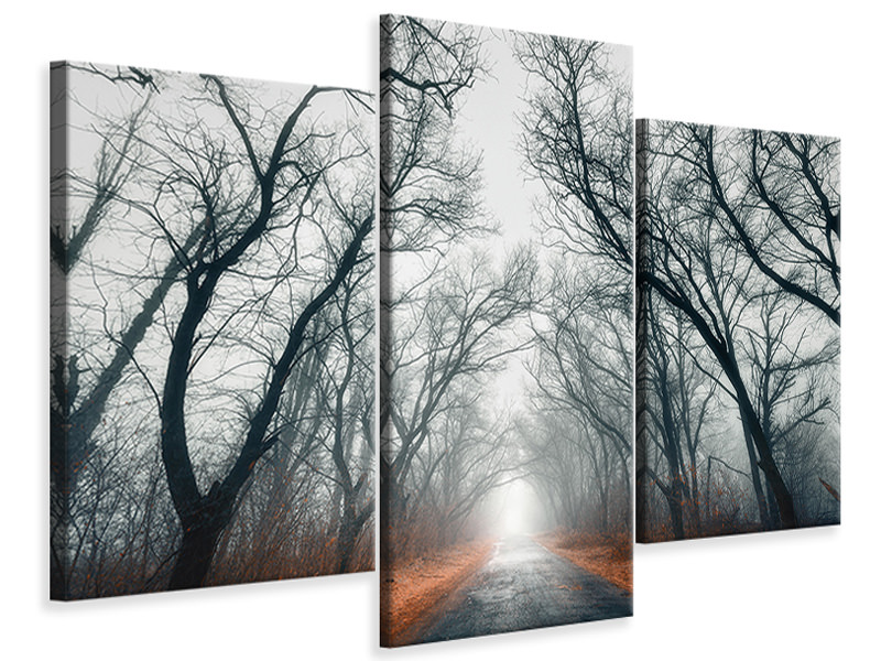 Modern 3 Piece Canvas Print Mysterious Mood In The Forest
