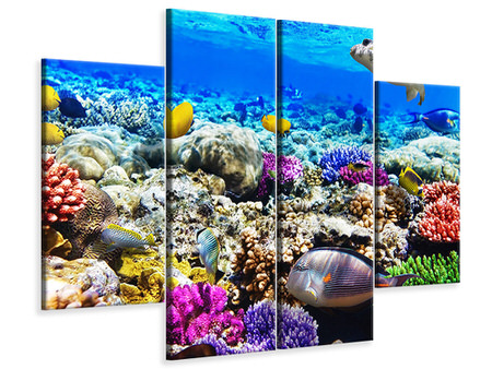 4 Piece Canvas Print Fish Aquarium