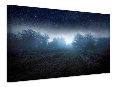 Canvas print Visions Of The Night