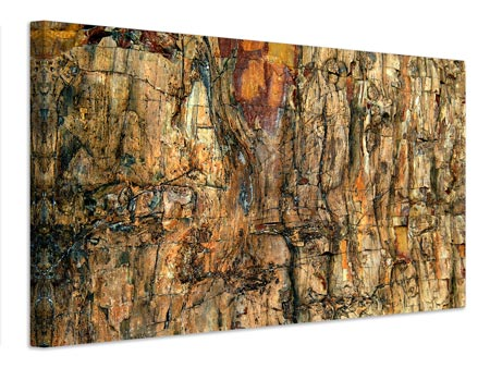 Canvas print Bark