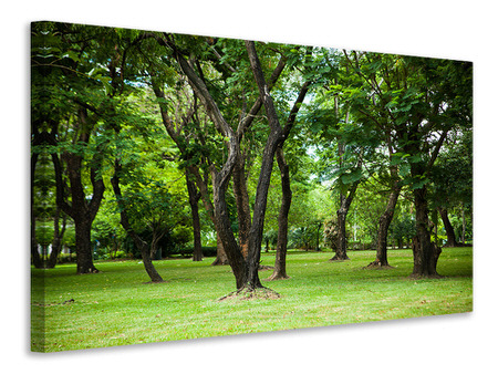 Canvas print Cherry Garden