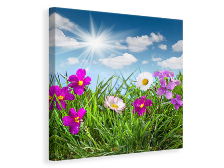 Canvas print Flowering Meadow