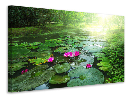 Canvas print Garden Pond