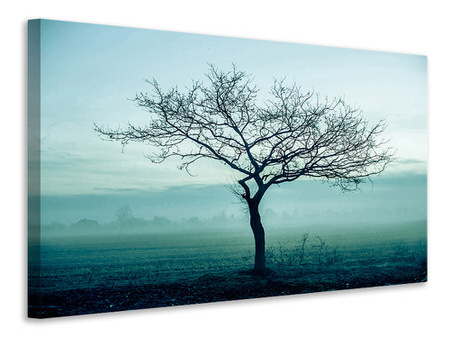 Canvas print The Magic Tree