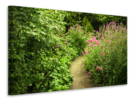 Canvas print Garden Path