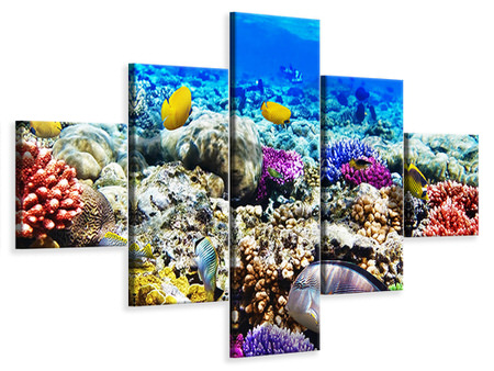 5 Piece Canvas Print Fish Aquarium